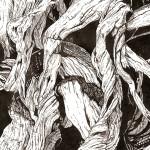Adrienne Guptill, Drifting Roots