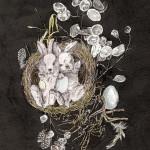 Adrienne Guptill, Cracked Eggs