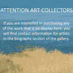 Attention Collectors NEW