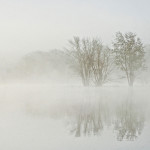 Deborah Upton-Savedoff, River Mist