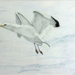 Joan Ingalls, In Flight