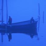 John O'Donnell, Morning Fog