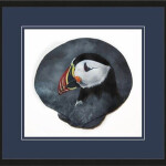 Beth Reicker, Atlantic Puffin